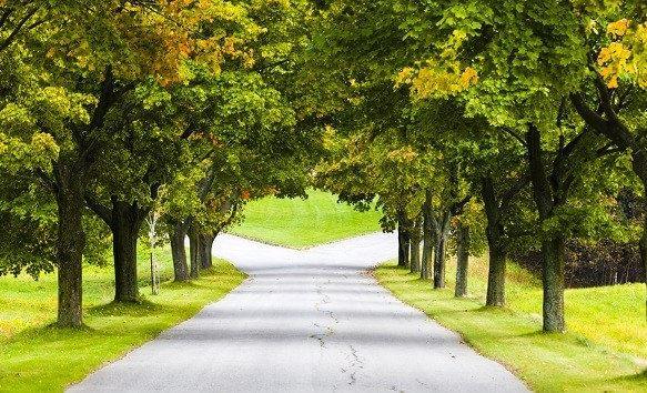 Een pad dat zich splitst als symbool voor scheiden
